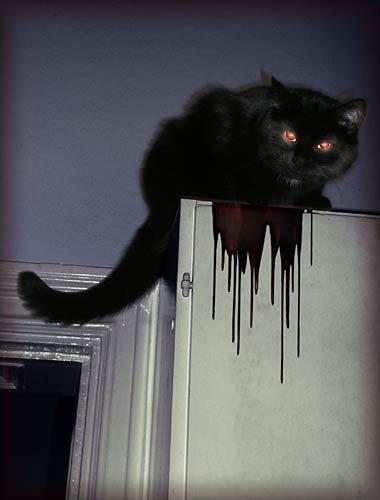 Evil Xeno