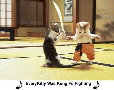 Kung Fu Fighting…