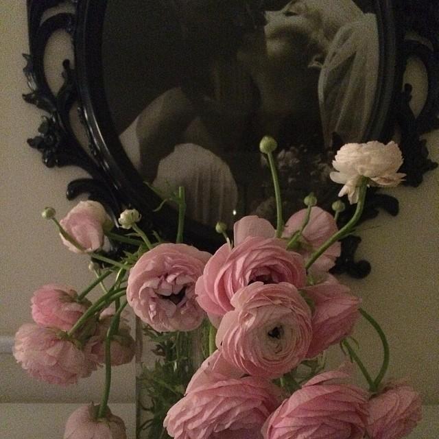 Fick dessa fantastiska ranukler av blomsterhandlaren igår då han tyckte de var för dåliga. Det tycker inte jag :)