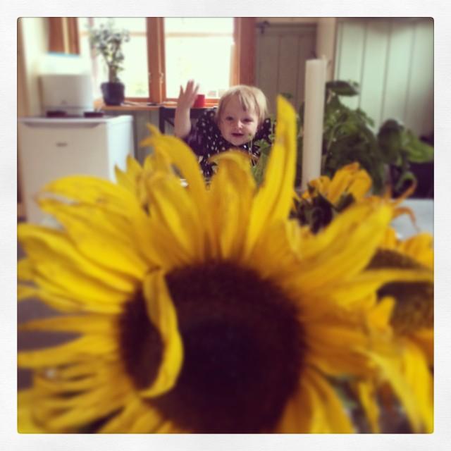 Solig Ada och solrosor. #adabebisen