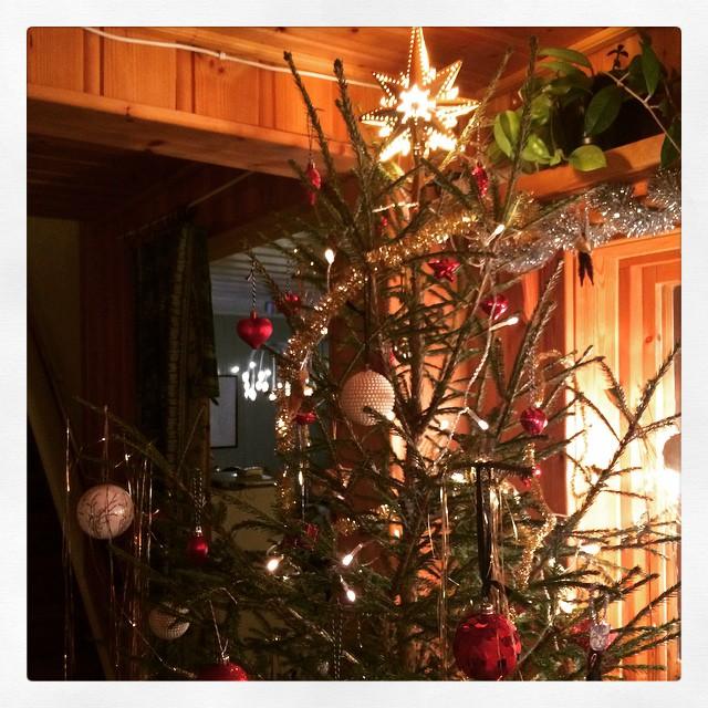 Älskar nya toppstjärnan och att M hittade en sådan tät och jämn gran. #jul