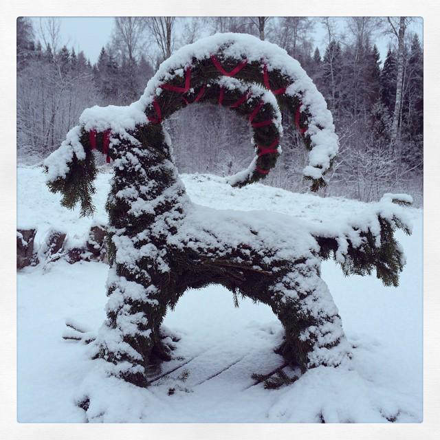 Adas julbock. #snow