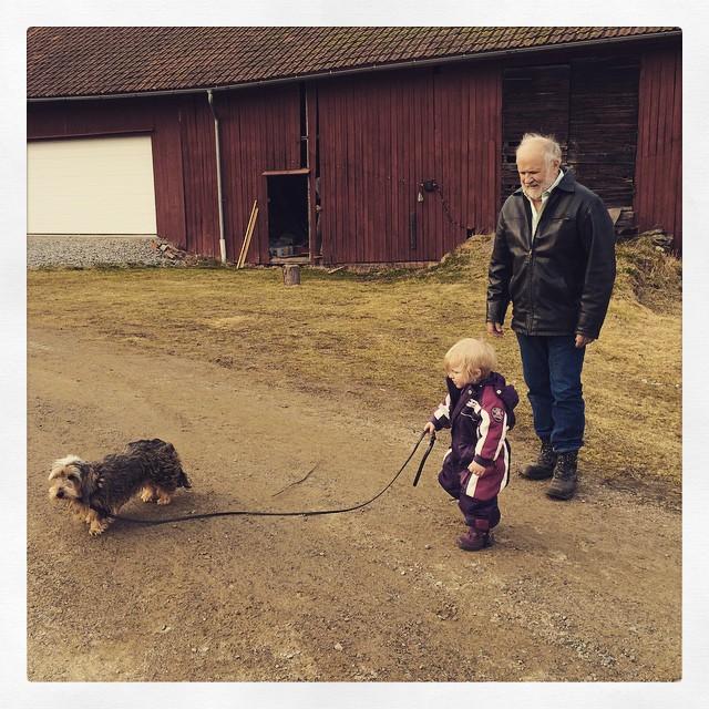 Ada går ut och går med Freja.