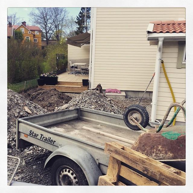 De gräver lite i vår trädgård…